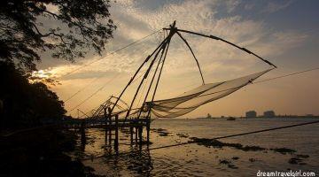 Kochi: friends, weddings and elephants