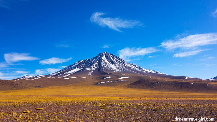 Mountain and vicunas