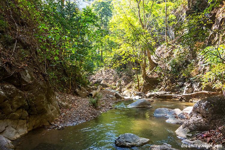 Jungle trekking: walking along the river
