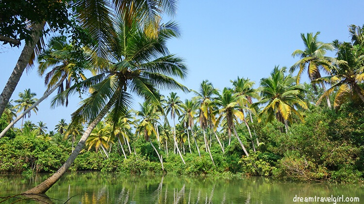 Places to visit in South India: Kerala backwaters