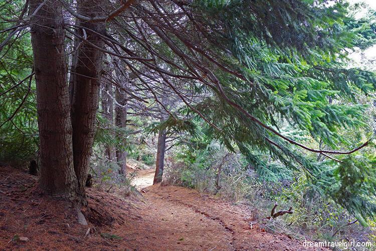 Bariloche: hiking up to Cerro Campanario