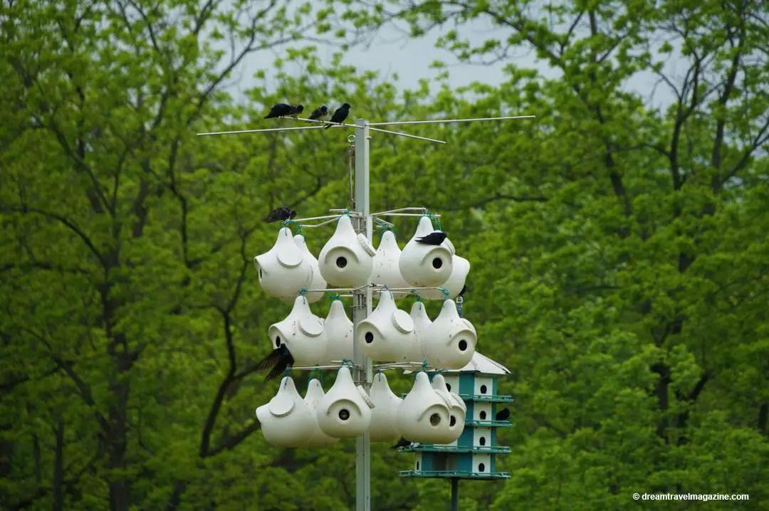 Bird Sanctuary Ruthven Park Haldimand County Ontario