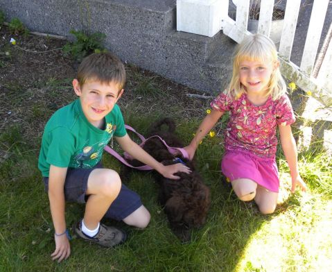 Charlie and her new kids - Going Home!