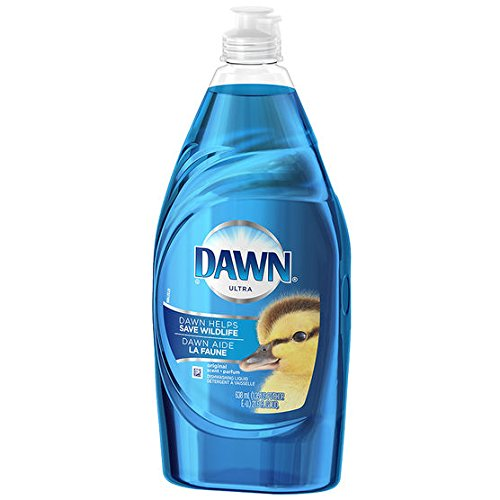 Can I Use Dish Soap On A Dog