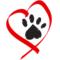 FDA Investigating Potential Link Between Diet and Heart Disease in Dogs - Pea Free Dog Food