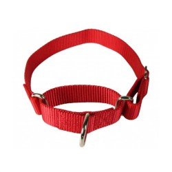 countrybrook-martingale-collar-3