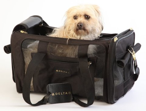 The Sherpa Deluxe Airline Dog Carrier is an airy, duffle-style carry on carrier with abundant mesh windows, providing extra ventilation for you pooch.