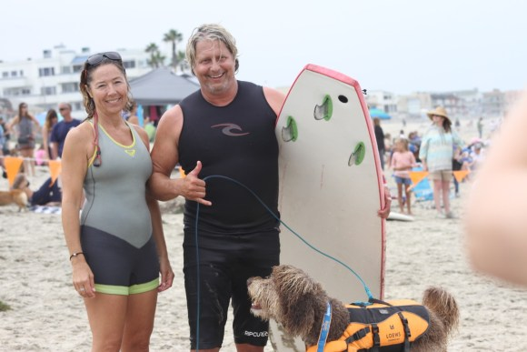 Kula the surfing Aussiedoodles first surf contest 2016