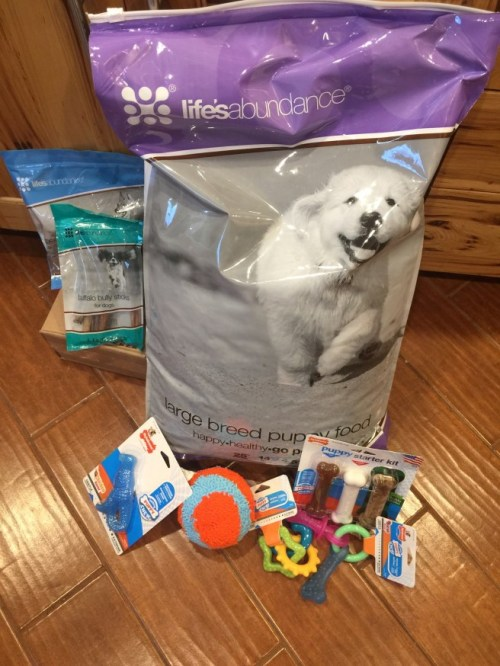 Our Recommended Puppy Supplies
