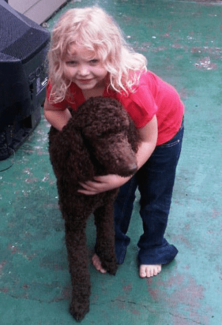 Our Chocolate Standard Poodle and Our Daughter