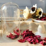 Terrarium Home Decoration. Filled with light smell of dried flowers.