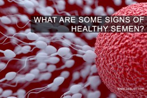 What Are Some Signs Of Healthy Semen? image