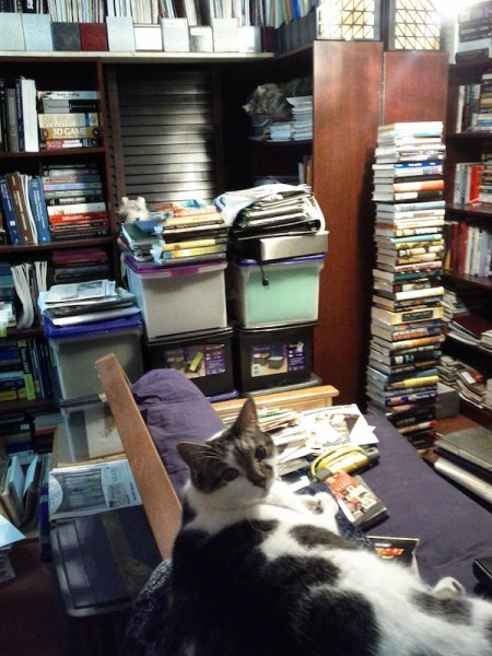 piles of books in my library