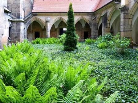 Dom Garten