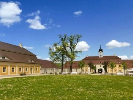 Wiese Innenhof Schloss Rammenau