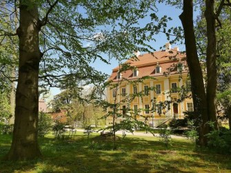 Blick aus dem Wald auf Schloss Rammenau