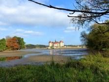 Teich ohne Wasser in Moritzburg