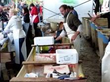 Fischverarbeitung vor Ort