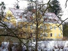Blick durch den Wald auf das Jagdschloss Grillenburg