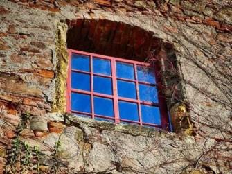 Altes Fenster mit Weinranken Steinbauer