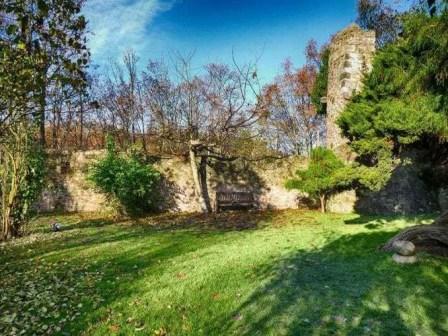Garten mit Bank Steinmauer Wiese Wald