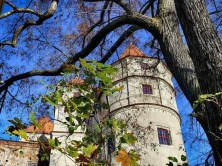 Turm Schloss Scharfenberg Laub Bäume