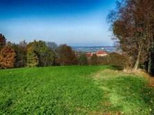 Landschaft Feld Bäume Ausblick