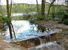 See Ablauf Wasser Bäume Ufer