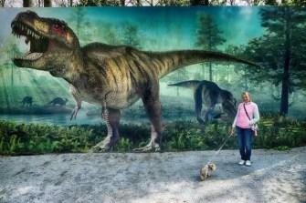 Großes Plakat vom Saurierpark