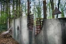 Zaun von Jurasic Park kaputt