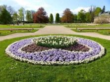 runde Blumenpracht Schloss Pillnitz