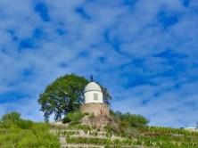 Schloss-Wackerbarth-Weingut-Bild-070