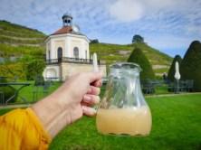 Schloss-Wackerbarth-Weingut-Bild-100