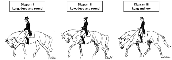 FEI to Review Dressage Training Methods–Focus on So-Called