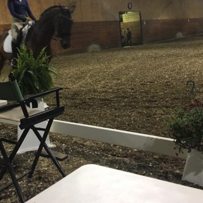 WHAT ARE THE MOST IMPORTANT BASICS FOR HORSE AND RIDER? ANSWERED BY LINDA LANDERS