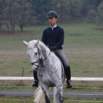 THE TRAINING SCALE OF DRESSAGE
