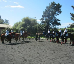 THE MAKING OF A QUADRILLE TEAM