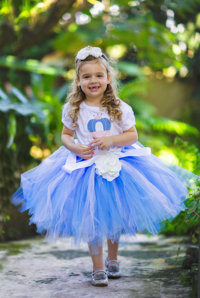 Cinderella Dress Picture Collection  Dressed Up Girl