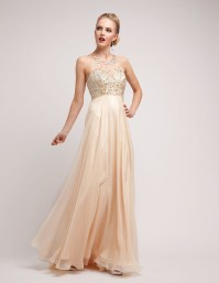 Champagne Prom Dresses   Dressed Up Girl