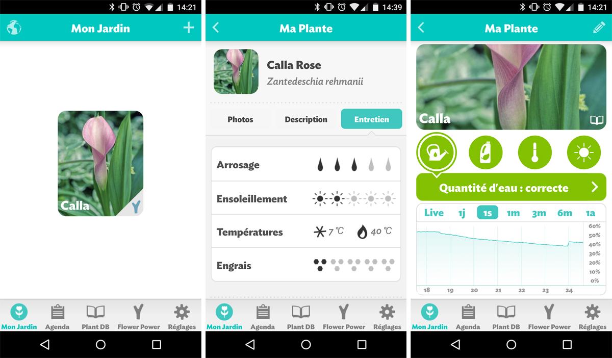 app-flopo-calla