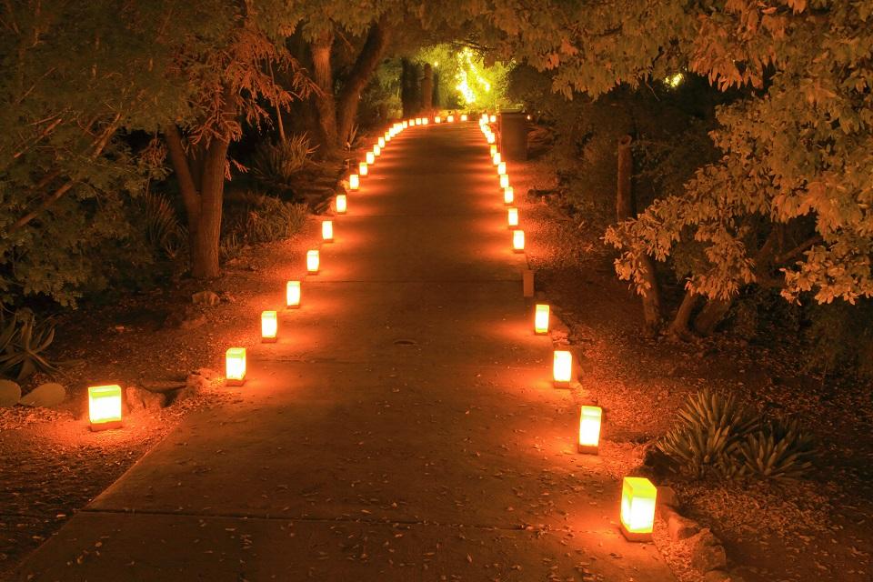Il fascino delle candele Una serata speciale e un piccolo