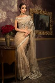 Beige Tulle Net Saree and Blouse