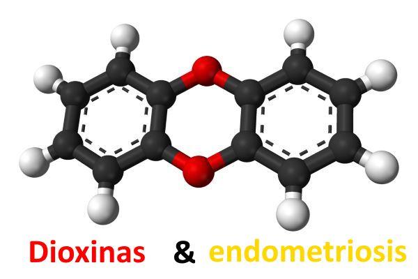 Relación entre las dioxinas y la endometriosis