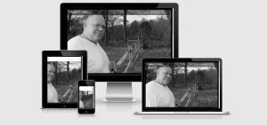 steven fallis website