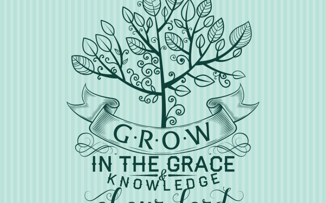 2 Peter 3:18, Grow in Grace