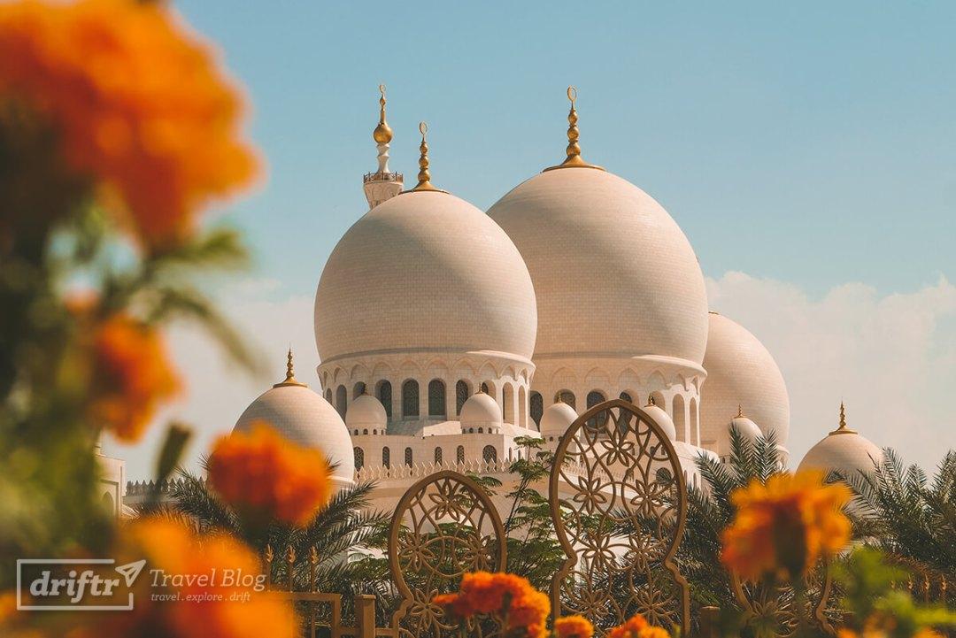 Scheich-Zayid-Moschee umrahmt von einer Blumenoase