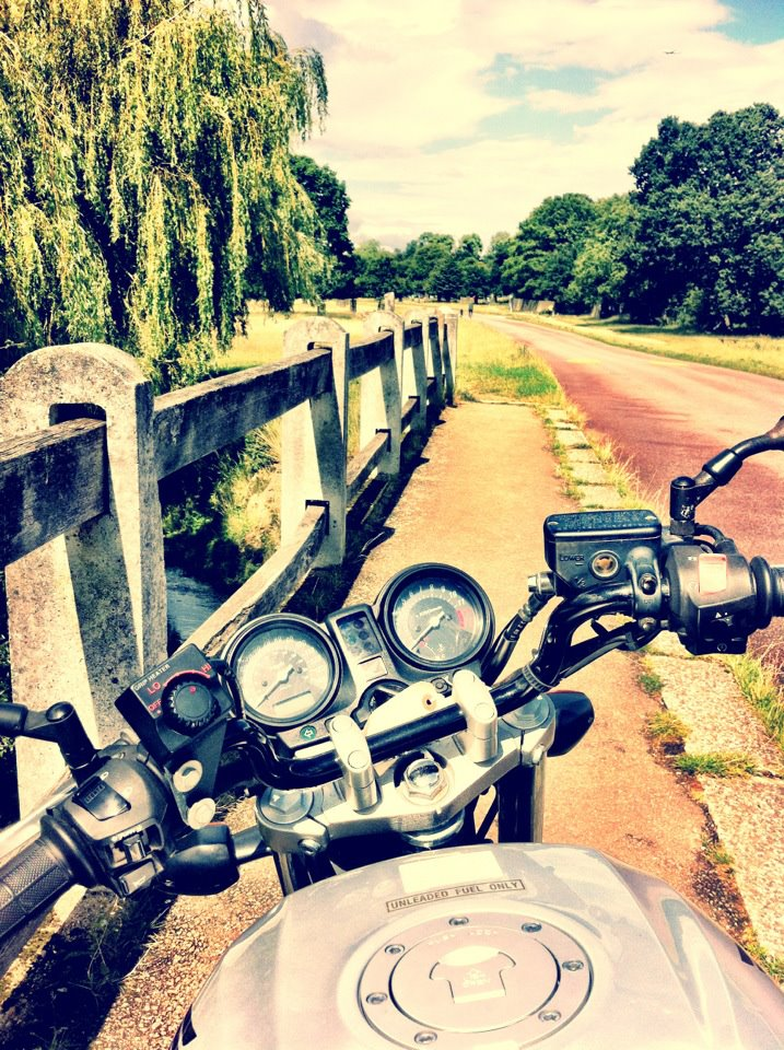 the vie over my handlebars on my motorcycle in richmond park, surrey, london, england