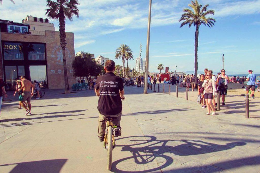 Bamboo cruising Barcelona's beach front.
