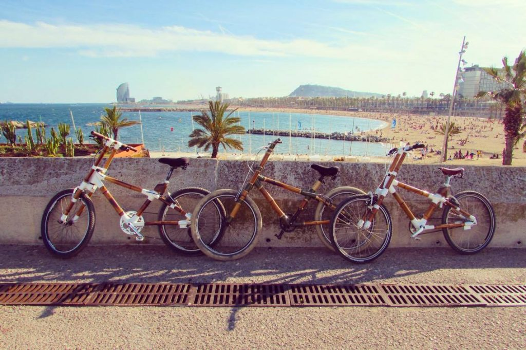 Our bamboo bike looking beach beautiful.