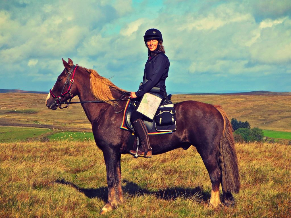 Freerein Horse Riding Holidays in Mid Wales, UK